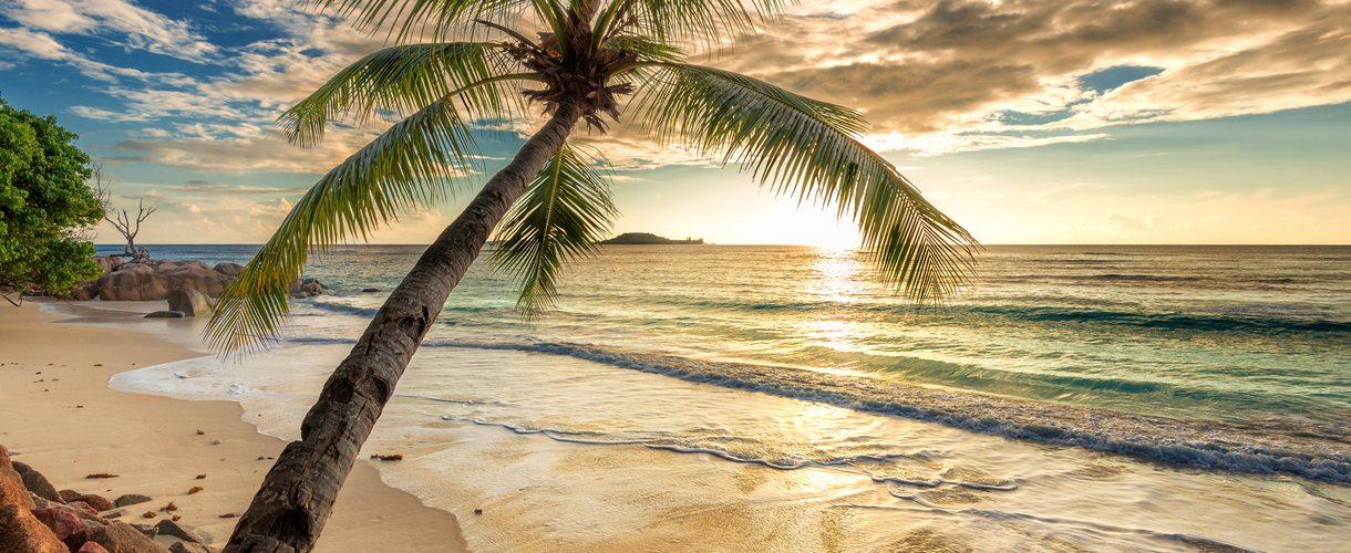 jamaika urlaub buchen